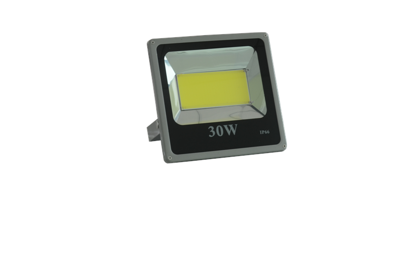 30W Formula Array LED Flood Light IP65